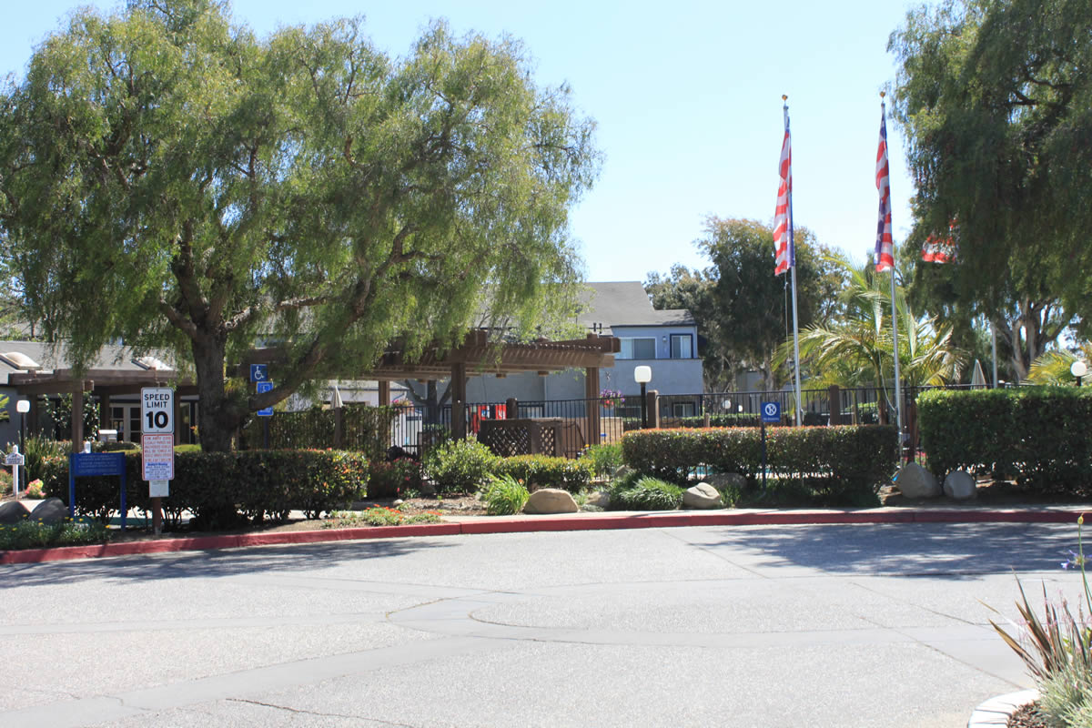 view from outside the apartment complex showing the fenced pool, 2 flagpoles, mature trees and palms