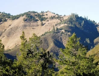 mountainous landscape with trees which is part of Los Padres National Forest in California