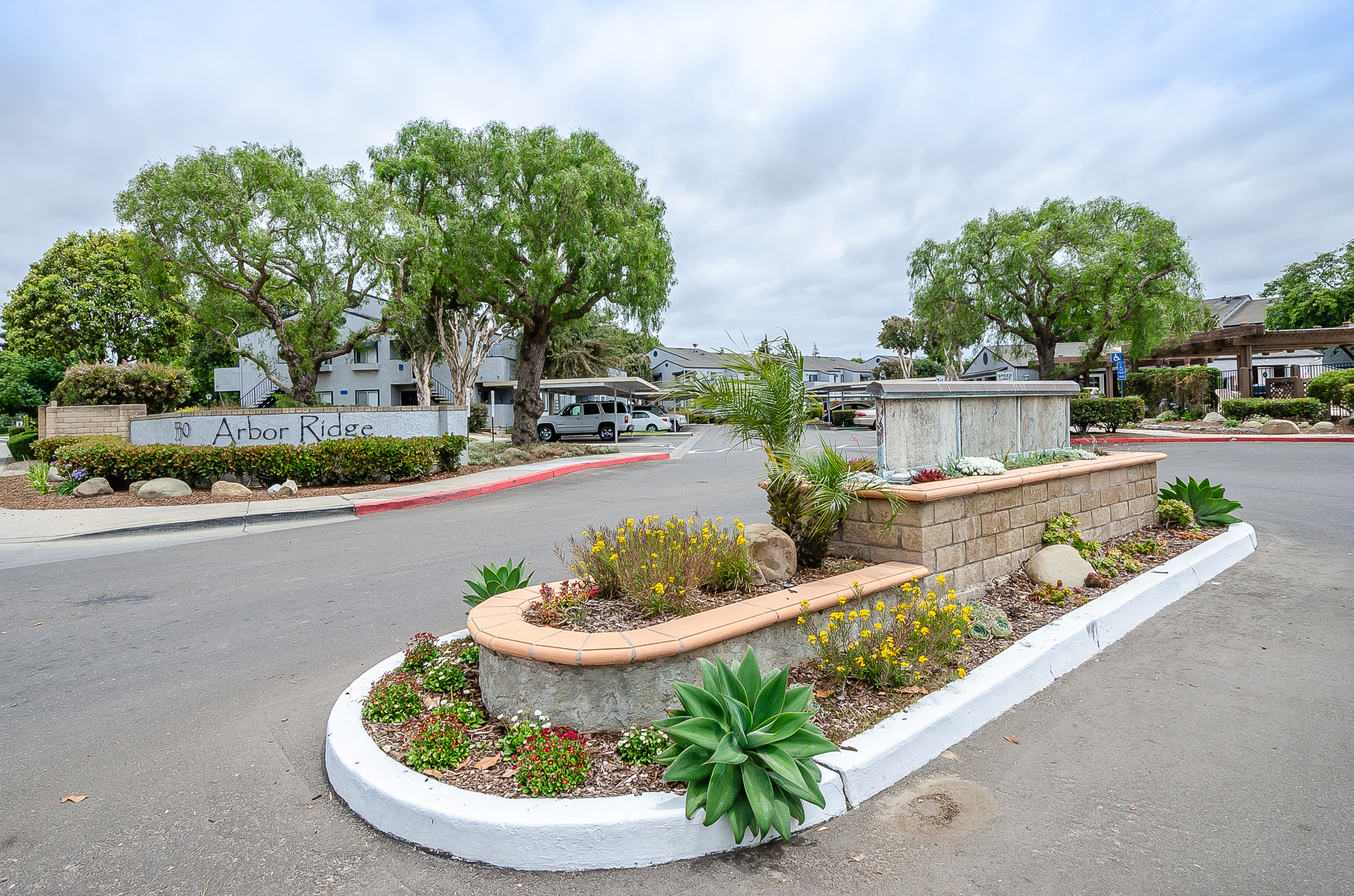 apartment complex entrance with landscaped island, Arbor Ridge sign, and tall green trees