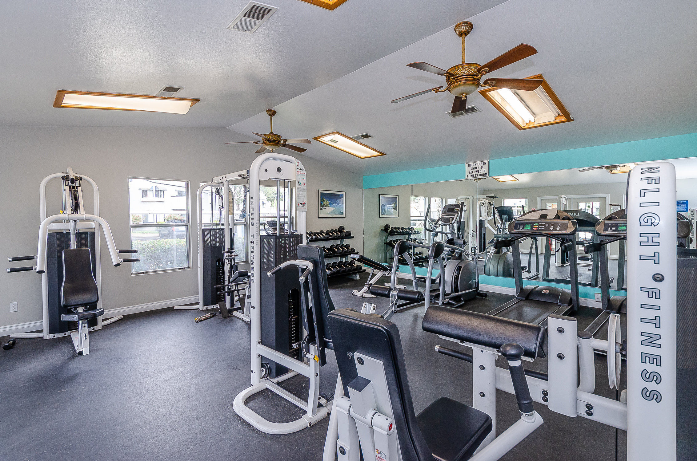fitness room with mirrors, windows, ceiling fans, weight machines, free weights and cardio equipment
